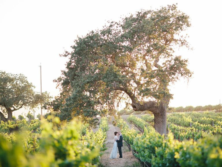 Vineyard Wedding Style
