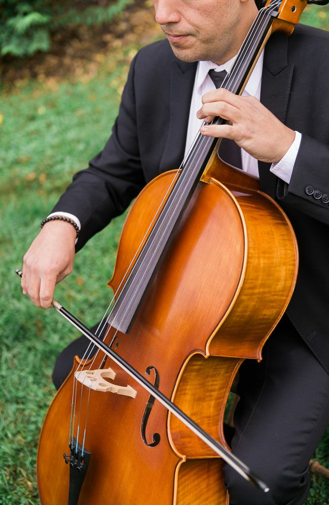 Mood Music Wedding Musician