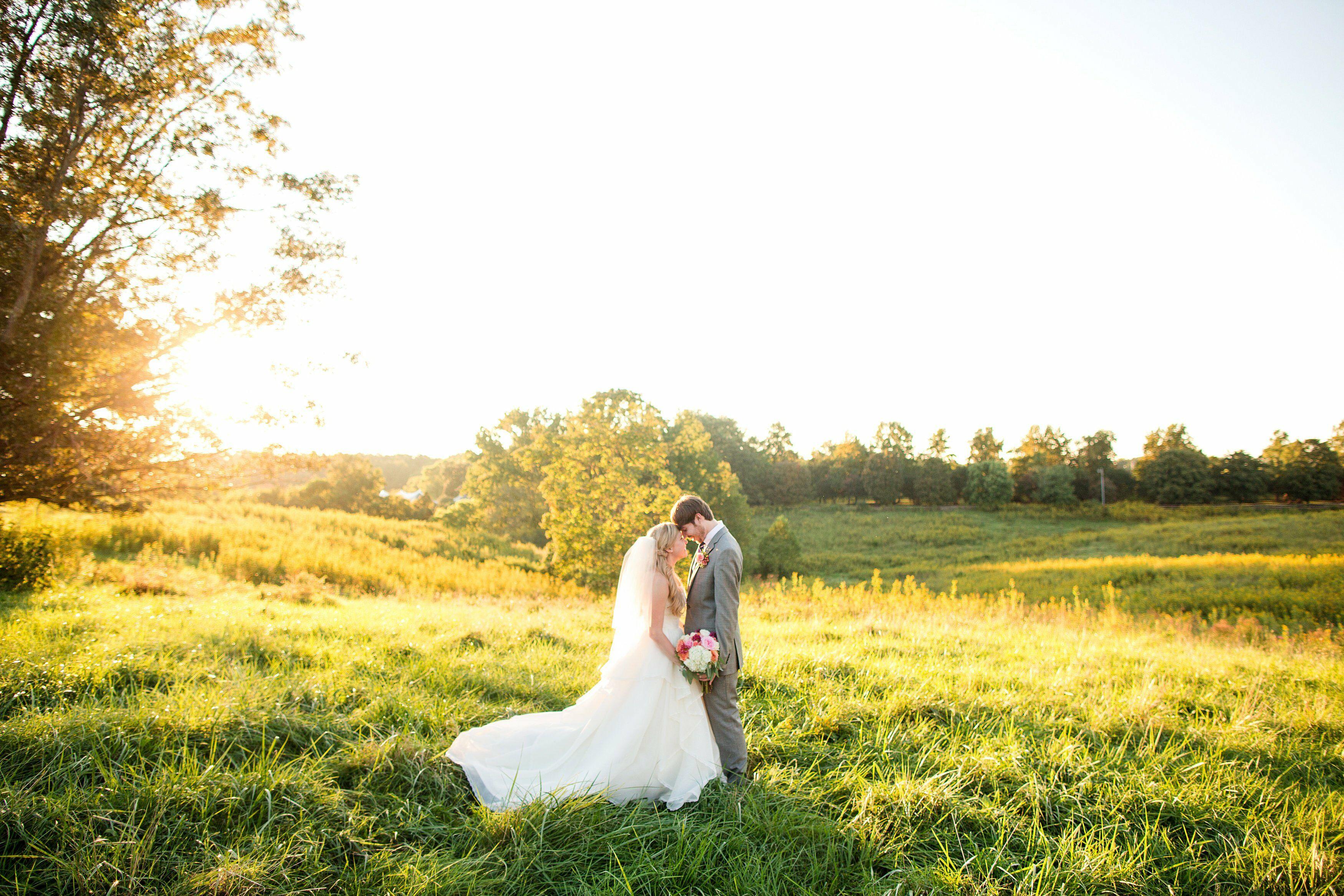 A Clover Forest Plantation Wedding In Goochland, Virginia