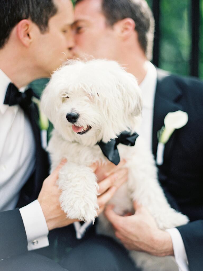 Same-sex couple holding dog