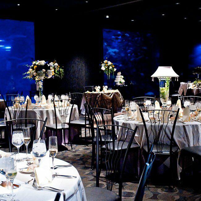 Adventure Aquarium Wedding Reception