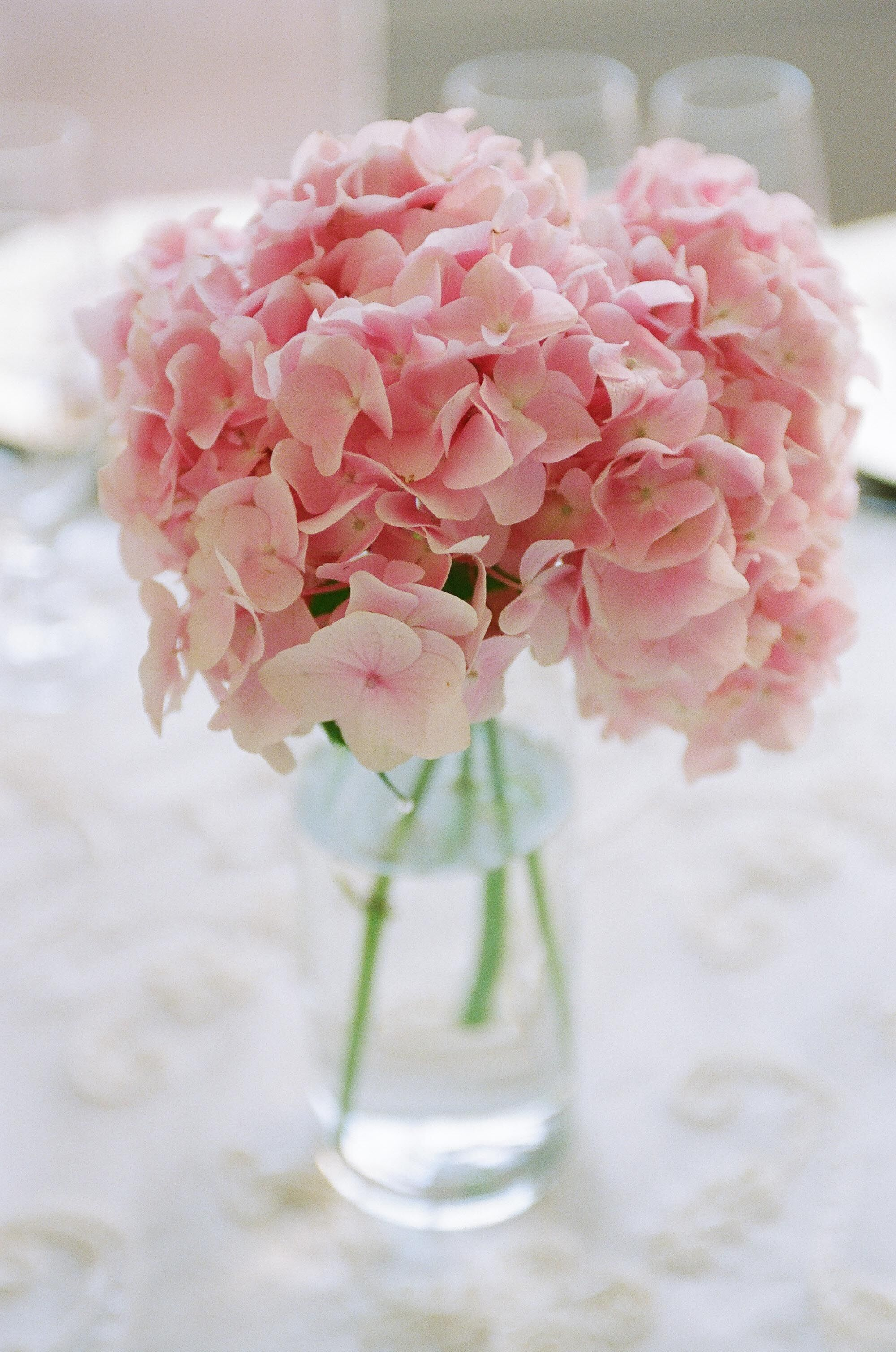 Light pink hydrangea centerpiece