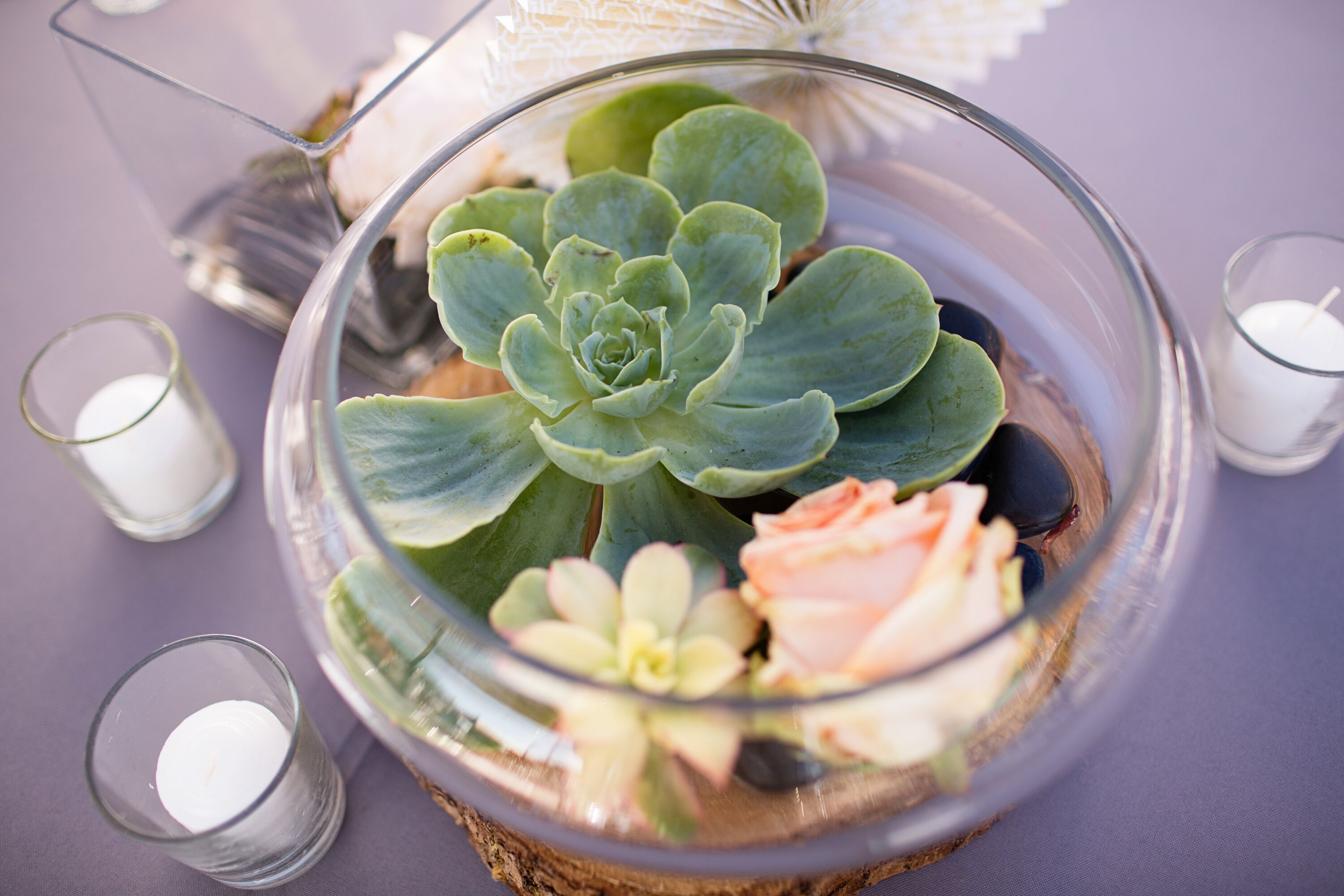 Succulent And Rose Table Centerpieces