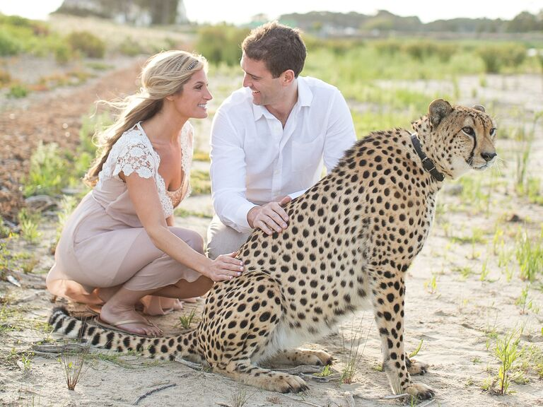Honeymoon at Cheetah Outreach, South Africa