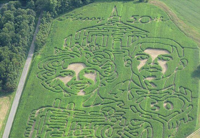 A Corn Maze Wedding Photo!