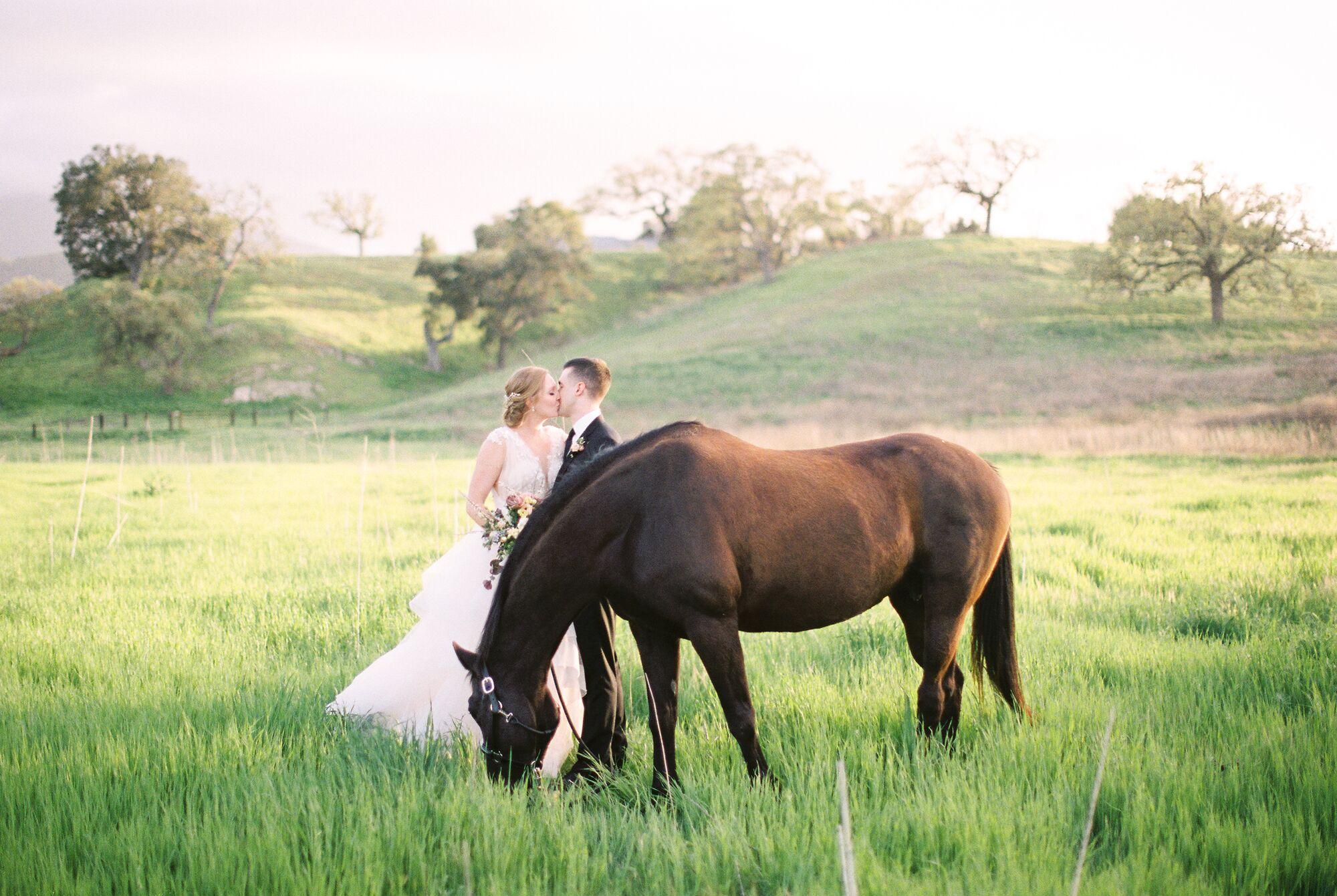 kestrel park wedding cost