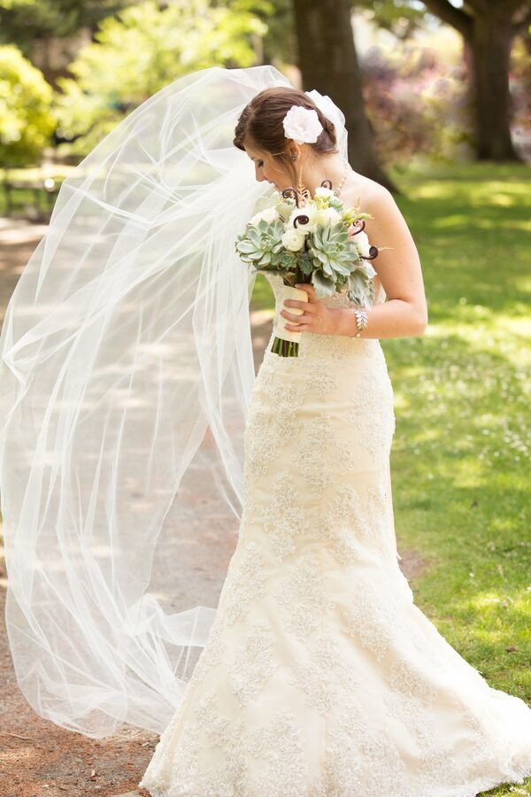 Long Veil and Lace Gown