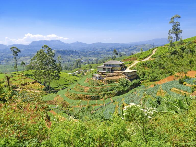 Sri Lanka Exotic honeymoon