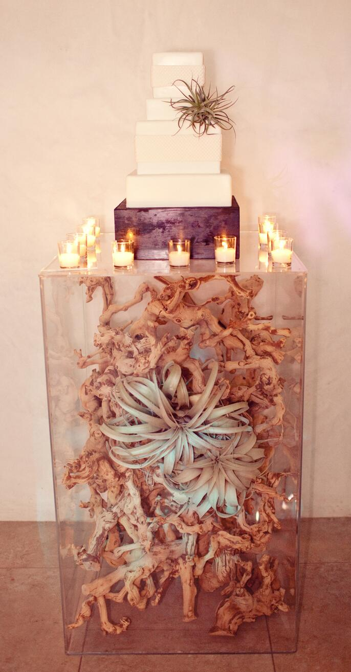 unexpected wedding cake display with driftwood and airplants - Wedding Cake Design Ideas