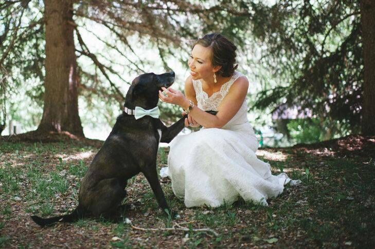 A bride posing with her black lab in a mint bow tie