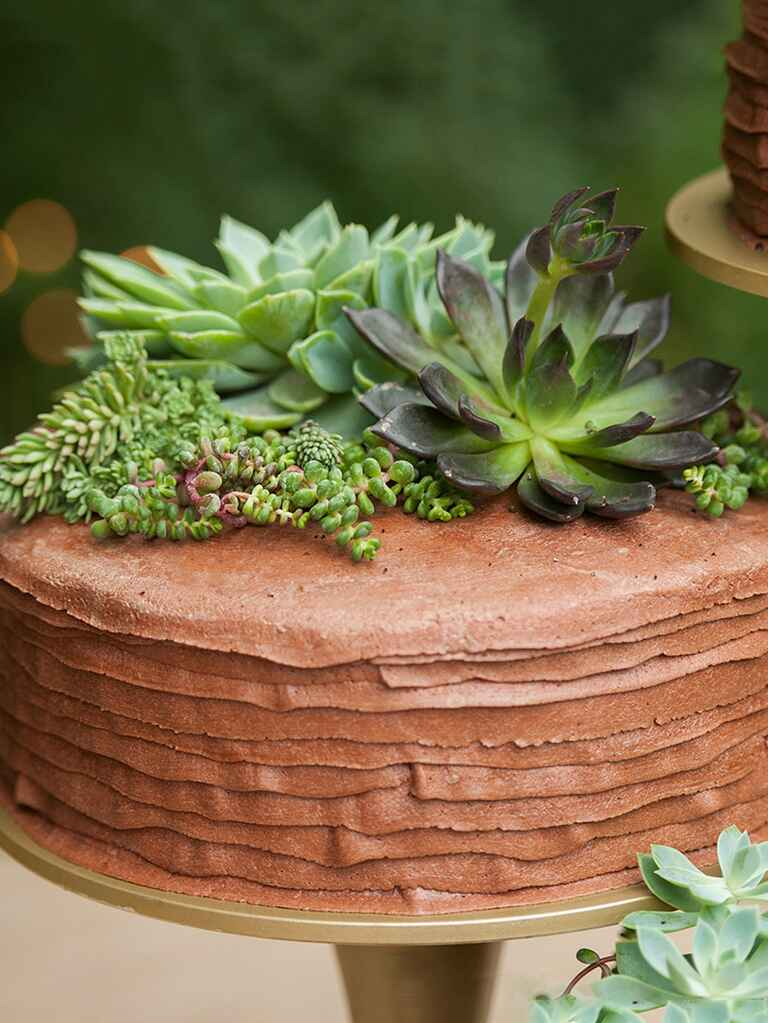 A single-tier chocolate cake with succulent cake topper and layered icing