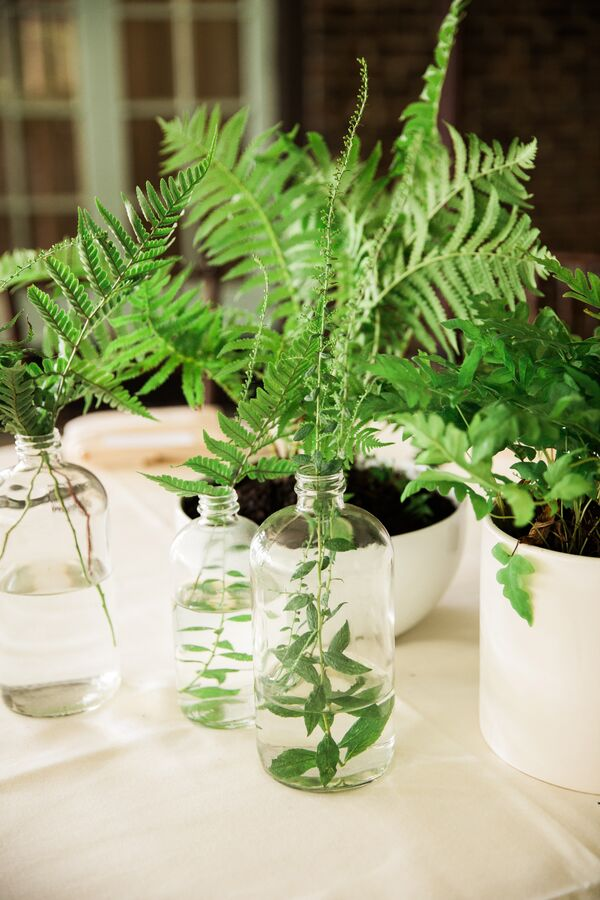 Potted Fern Centerpieces and Delicate Bud Vases