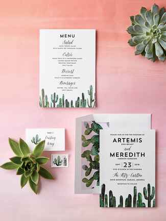 Minted southwest cactus illustrated wedding invitation suite