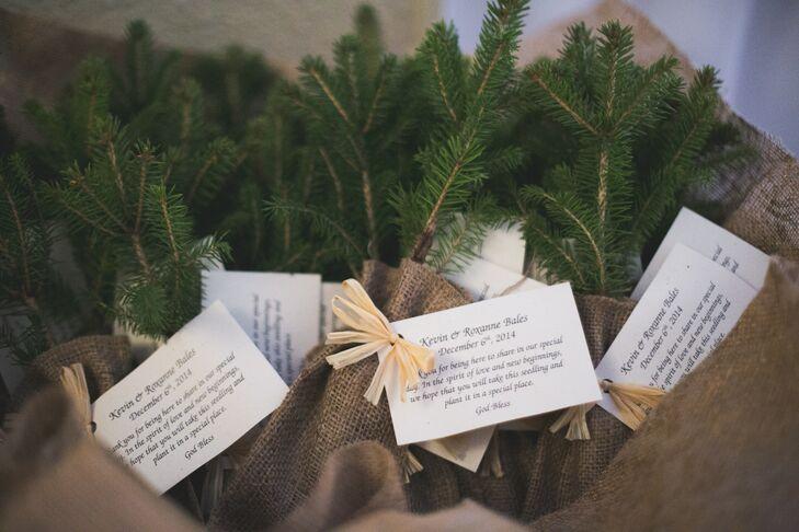 Fir Tree Sapling Wedding Favor