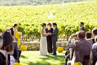 Beverly and Banjo exchanged vows in a beautiful outdoor ceremony at the Hammersky Vineyards in Paso Robles, CA. The couple chose a bright yellow color