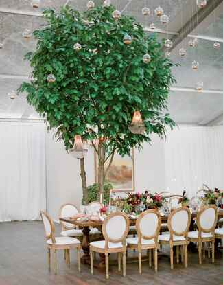 Indoor wedding reception with hanging terrariums and potted trees