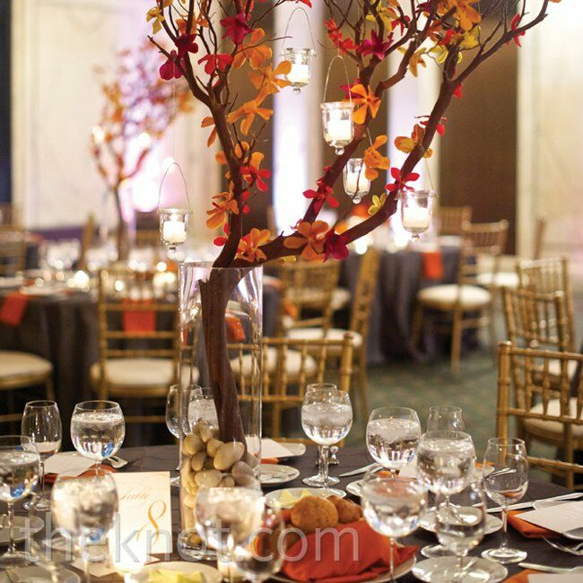 Manzanita branch and orchid centerpiece for Idee deco vase