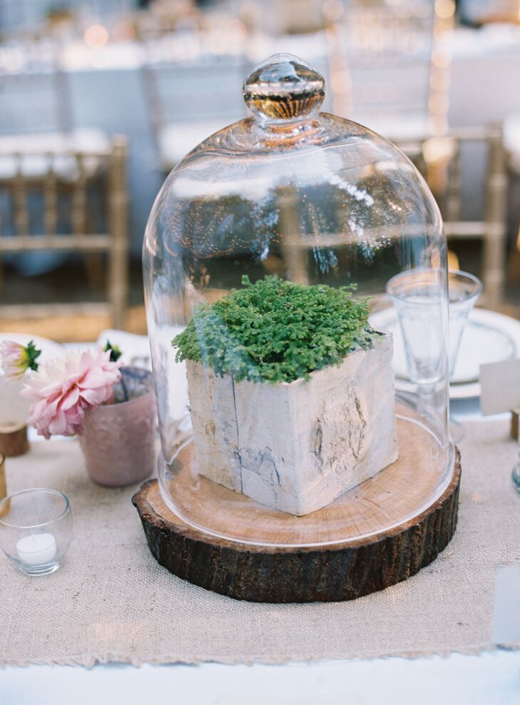 Liz purchased plants and arranged them underneath large cloches, perched on top of redwood slabs cut by Shiloh. Votive candles surrounded the natural DIY centerpieces, creating a touch of enchantment to the rustic display.