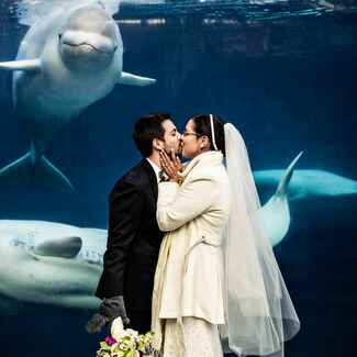 Mystic Aquarium wedding with whales