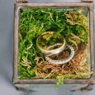wedding rings in a glass ring box