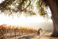 Amanda and Joel exchanged vows at the HammerSky Vineyards in Paso Robles, CA. The couple incorporated the colors of the season into the decor to perfe