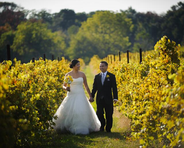 Laurita winery branches catering west long branch nj an autumn vineyard wedding at laurita winery in new egypt new jersey junglespirit Images