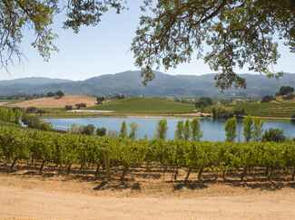US wedding destination Napa Valley and Sonoma Valley, California