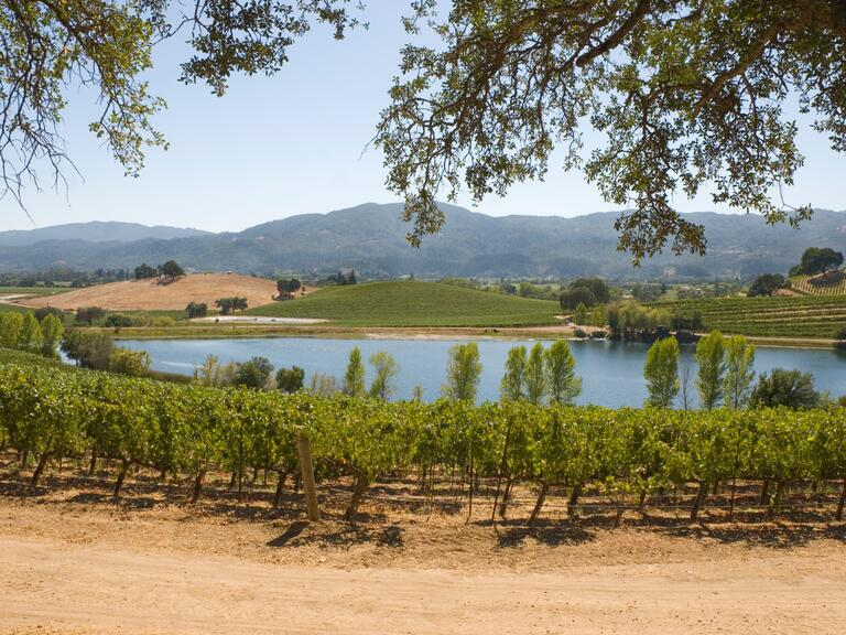 US wedding destination Napa Valley and Sonoma Valley, California