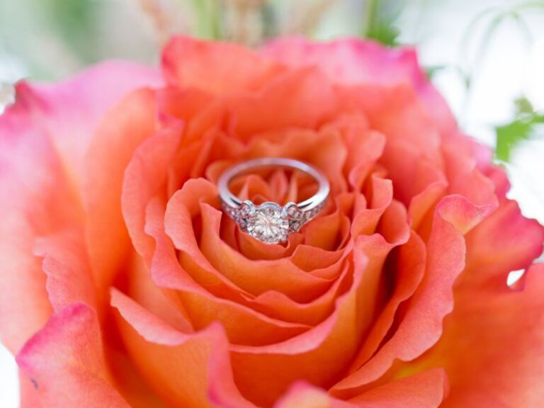 Engagement ring sitting on top of an orange and pink blooming rose.