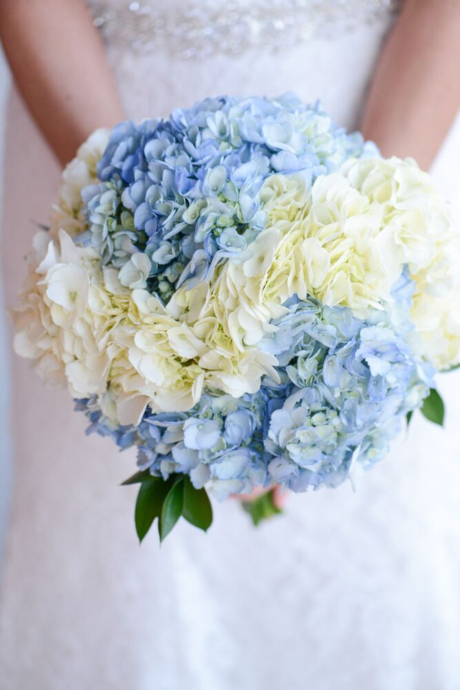 white hydrangea wedding bouquet white and blue hydrangea bouquet 1342