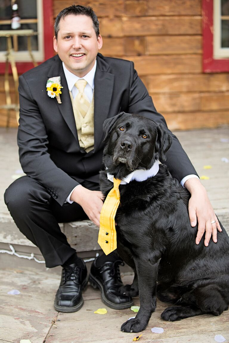 Dog in Yellow Tie