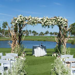 Driftwood And Hydrangea Wedding Arch