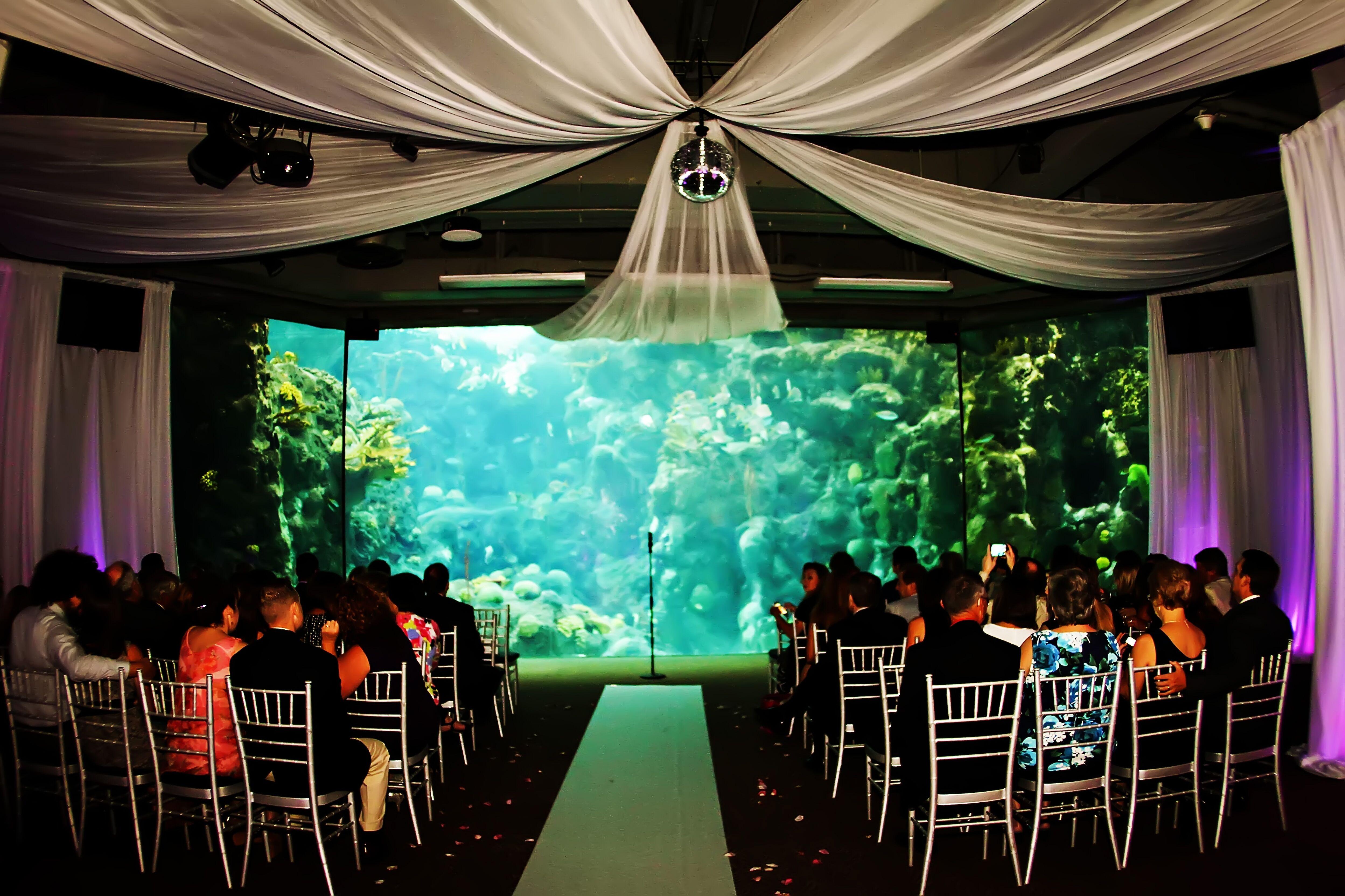 Florida Beach Wedding With Aquarium Reception: Aquatic Wedding Venue