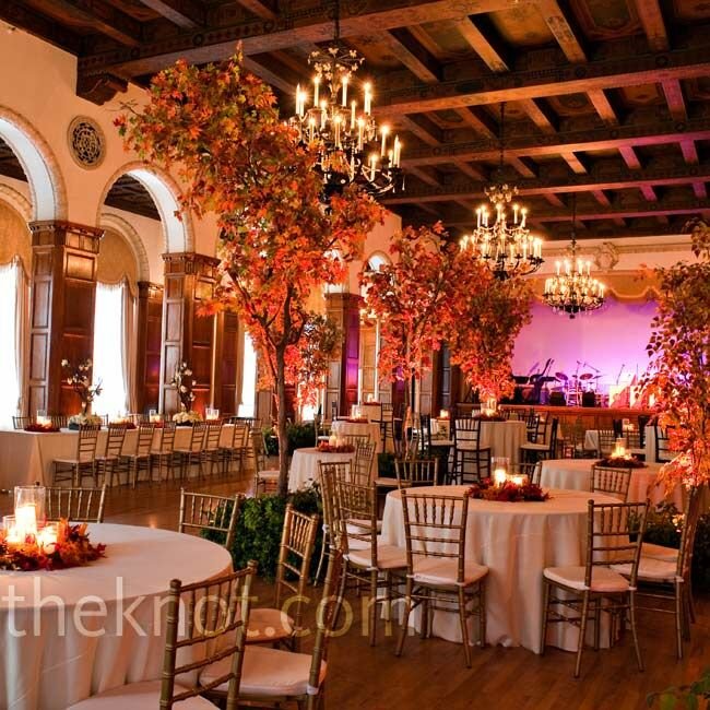 Indoor Wedding Themes: Indoor Tree Decor