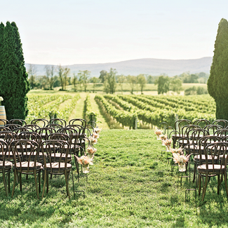 wedding at a vineyard