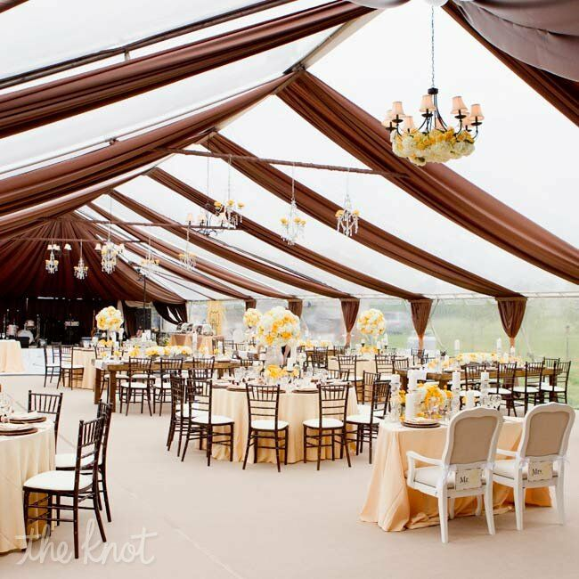 Elegant Reception Draping