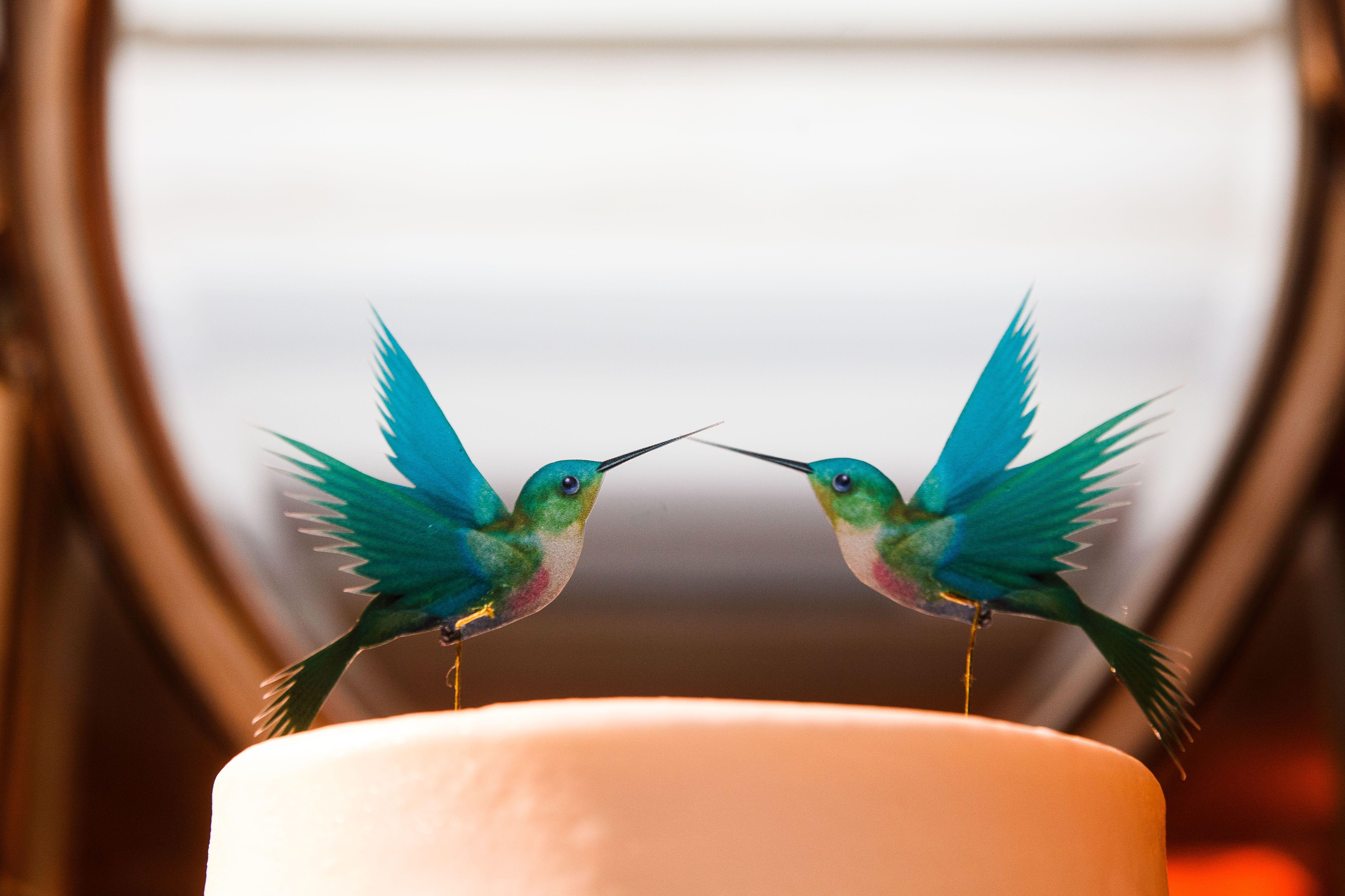 Hummingbird Cake Toppers
