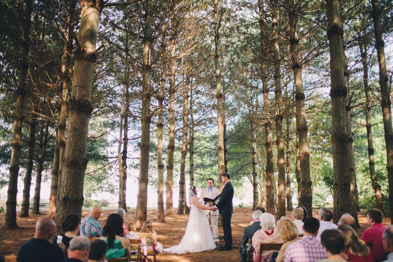 Rustic Pine Tree Thicket Wedding Ceremony