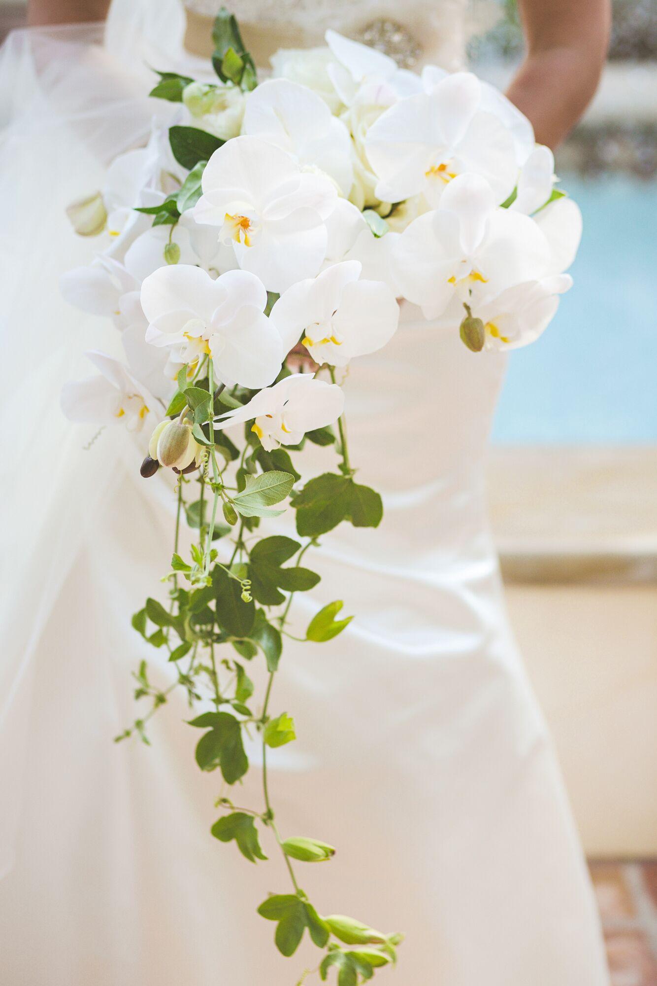 Cascade Orchid Bridal Bouquet : White orchid cascade bridal bouquet
