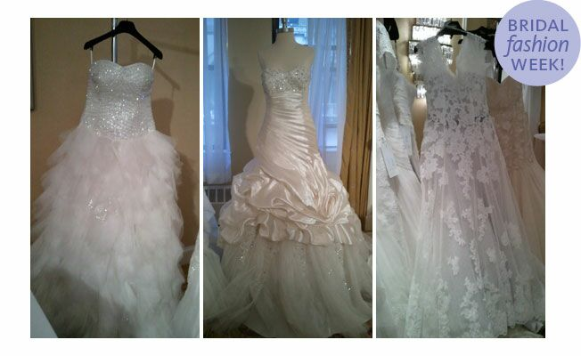 Anjolique bridal gowns